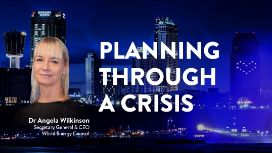 CEO View: Planning Through a Crisis
