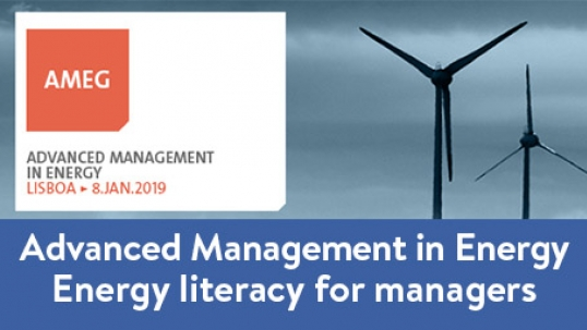 Advanced Management in Energy Program: energy literacy for managers