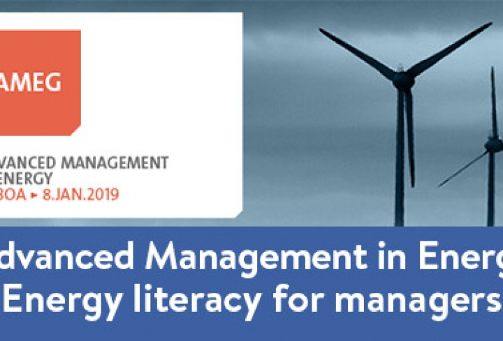 Advanced Management in Energy Program: energy literacy for managers - News & Views