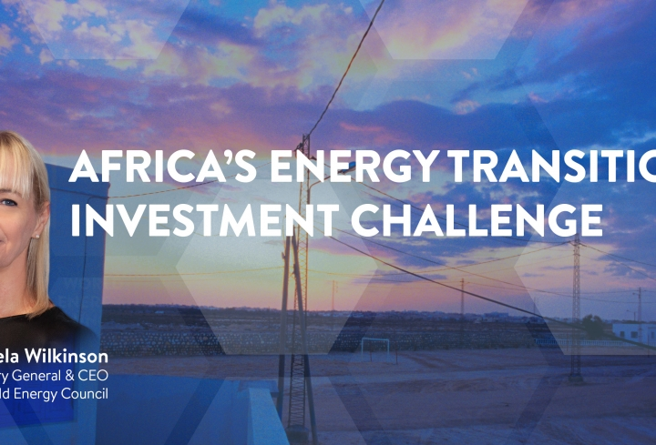 CEO view: Africa's Energy Transition Investment Challenge  - News & Views