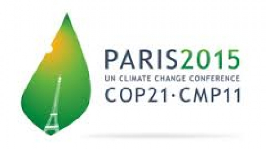 The World Energy Council's call to the 21st Conference of Parties