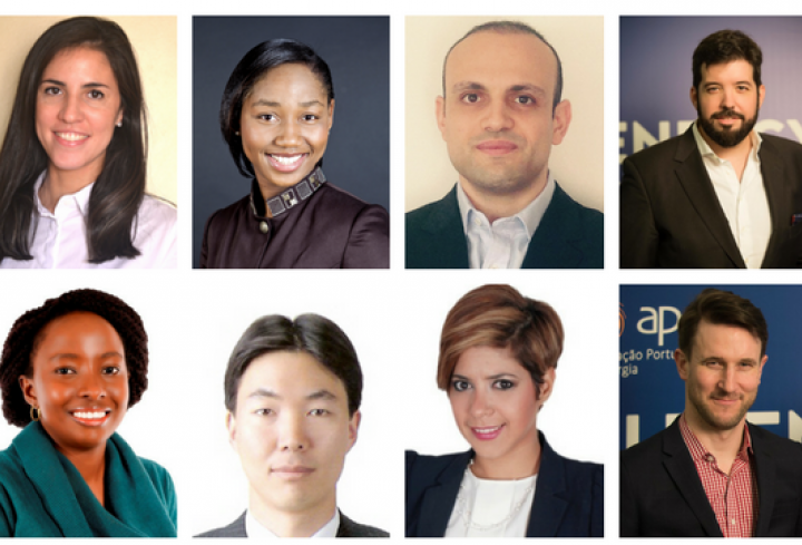 Meet our new talented FEL Board - News & Views