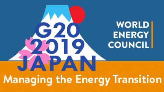 How countries in the G20 develop better policies for managing the energy transition