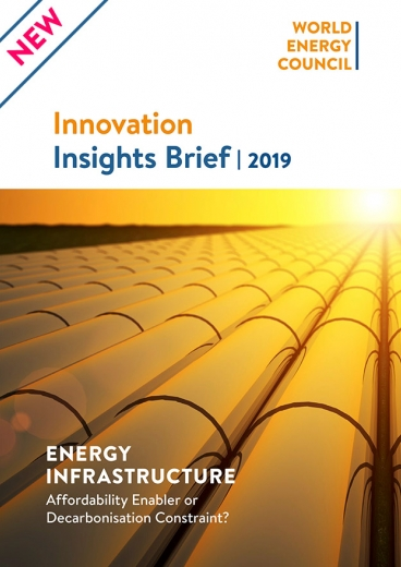Innovation Insights Brief - Energy Infrastructure: Affordability Enabler or Decarbonisation Constraint?