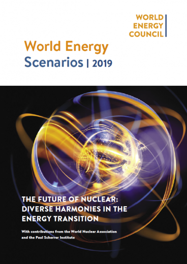 The Future of Nuclear: Diverse Harmonies In the Energy Transition