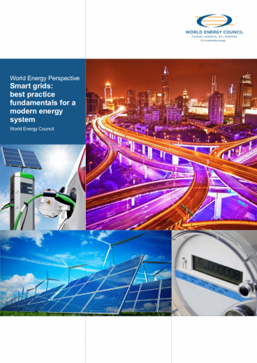 World Energy Perspective: Smart grids - best practice fundamentals for a modern energy system