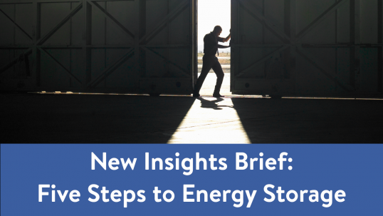 New Insights Brief on Energy Storage is launched