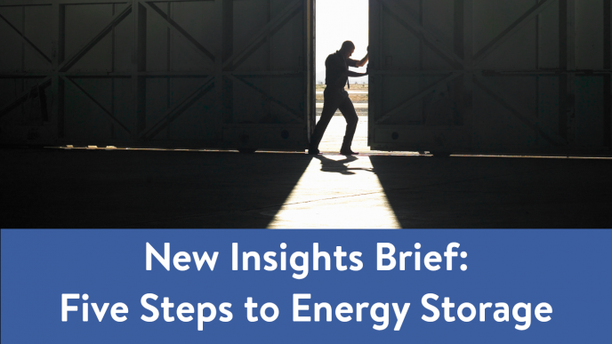 New Insights Brief on Energy Storage is launched - News & Views