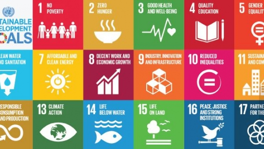World Energy Council welcomes energy inclusion in UN Sustainable Development Goals