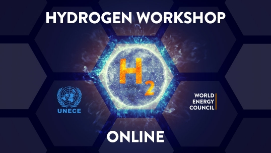Successful Hydrogen Online Workshop