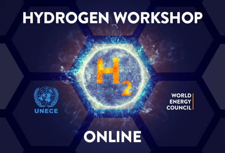 Successful Hydrogen Online Workshop  - News & Views