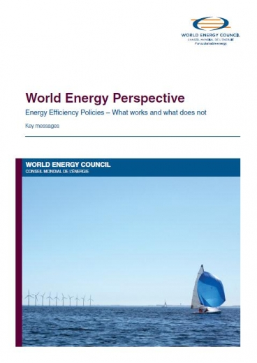 World Energy Perspective: Energy Efficiency Policies – What works and what does not