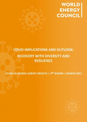 3rd COVID-19 Impact Survey Results and Outlook: Recovery with Diversity and Resilience