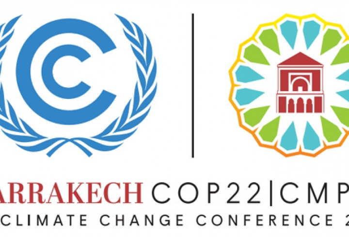 World Energy Council brings  7 new realities in energy to COP22 negotiations in Marrakech - News & Views