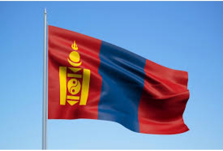 World Energy Council welcomes Mongolia as its newest member committee - News & Views