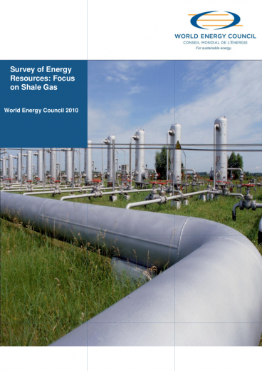 World Energy Perspective: Shale Gas 2010