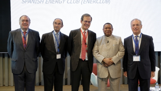 Energy Futures: The Middle East and Regional Energy Transitions